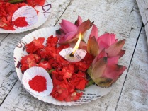 india 1 sett_ott 2008 214